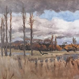Jerrabomberra Wetlands from Clare Holland House, 2016, oil on board, 33 x 21cm