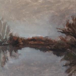 Burley Griffin Wetlands, 2016, oil on board, 33 x 21cm